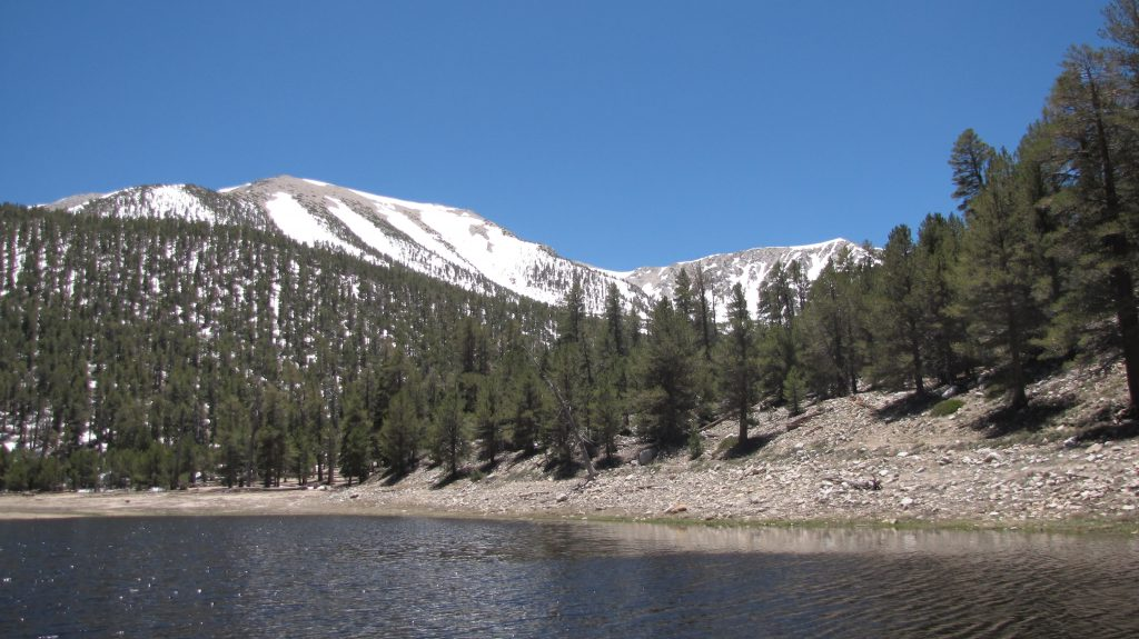 SB county 0016-dry-lake-and-san-gorgonio